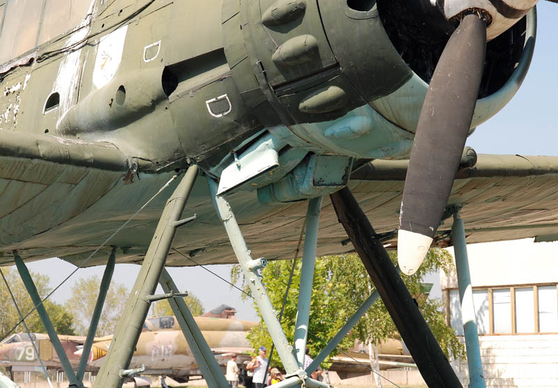 arado-196-bulgarian-air-force-sky-for-all-100-years-bulgarian-air-force_2