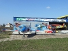 Soko G-2 Galeb Aerobatic Team Stars