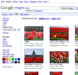 images_toolbelt