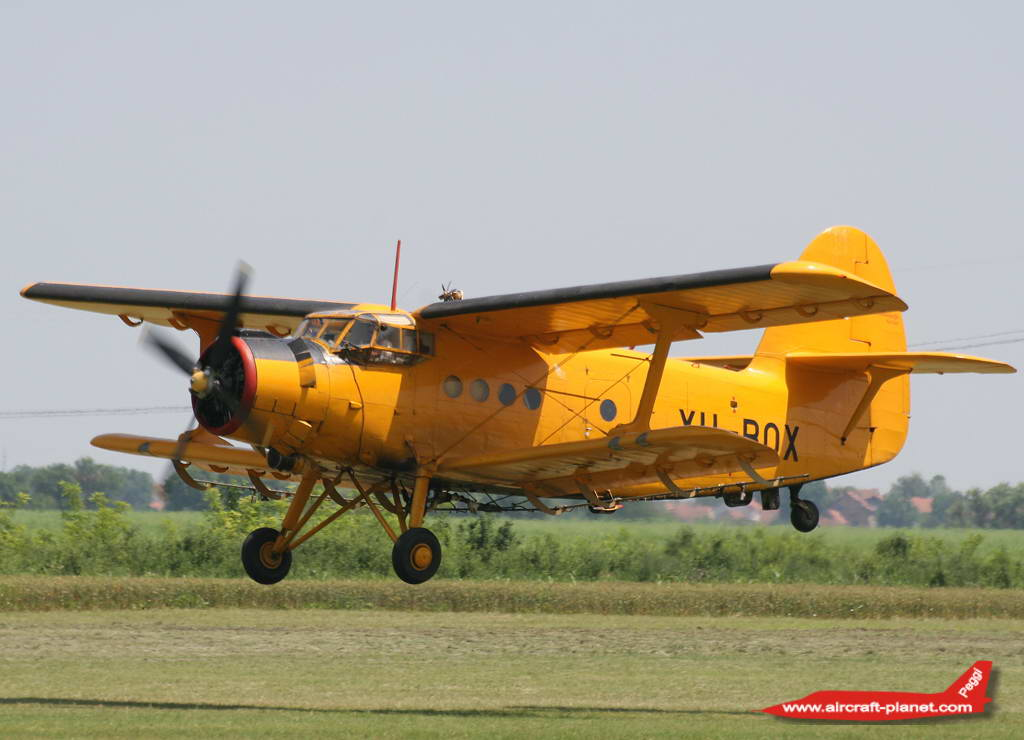 Antonov An2 ,YU-BOX,Ciklonizacija Novi Sad